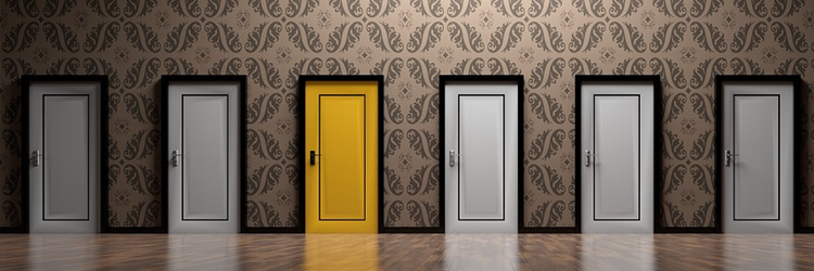 SHARE : Open and Closed Doors